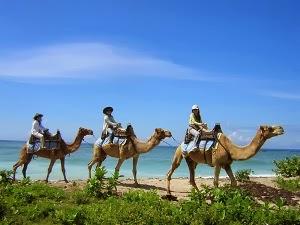 Tempat wisata Bali terbaru