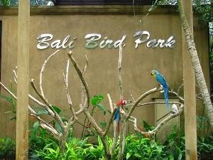 1424723940_Bali-Bird-Park.jpg