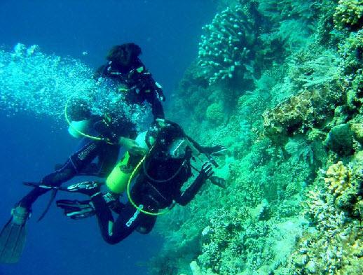 scuba diving di wisata pelabuhan ratu