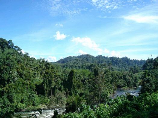 Taman-Nasional-Kerinci-Seblat-wisata-kerinci