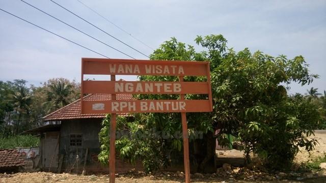 Lokasi Wisata Pantai Nganteb
