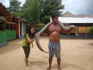 turtle island tanjung Benoa Bali